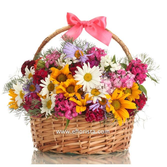 Fiori Compleanno - eFiorista online in Italia ti aiuta a consegnare o regalar...