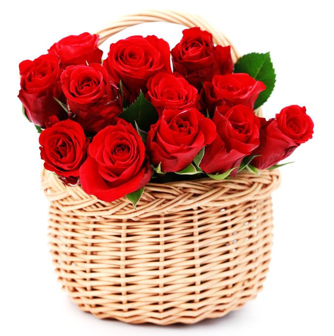 Efiorista online in italia ti aiuta a regalare e for Foto di rose bellissime